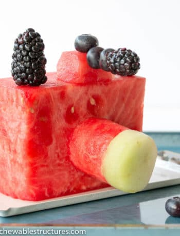 A fruit tray of an edible camera made of watermelon, blackberry, blueberry and honydew